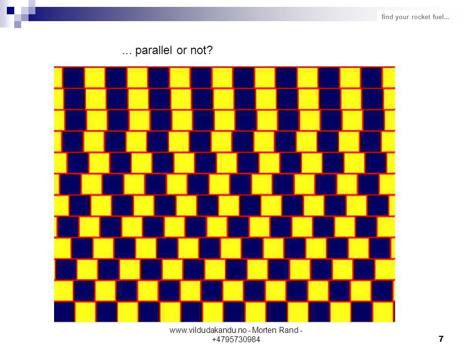 find your rocket fuel... www.vildudakandu.no - Morten Rand - +47957309847... parallel or not?