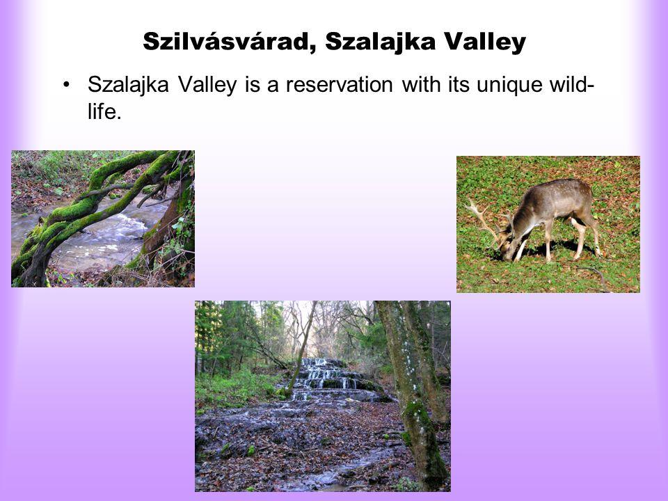 Szilvásvárad, Szalajka Valley •Szalajka Valley is a reservation with its unique wild- life.