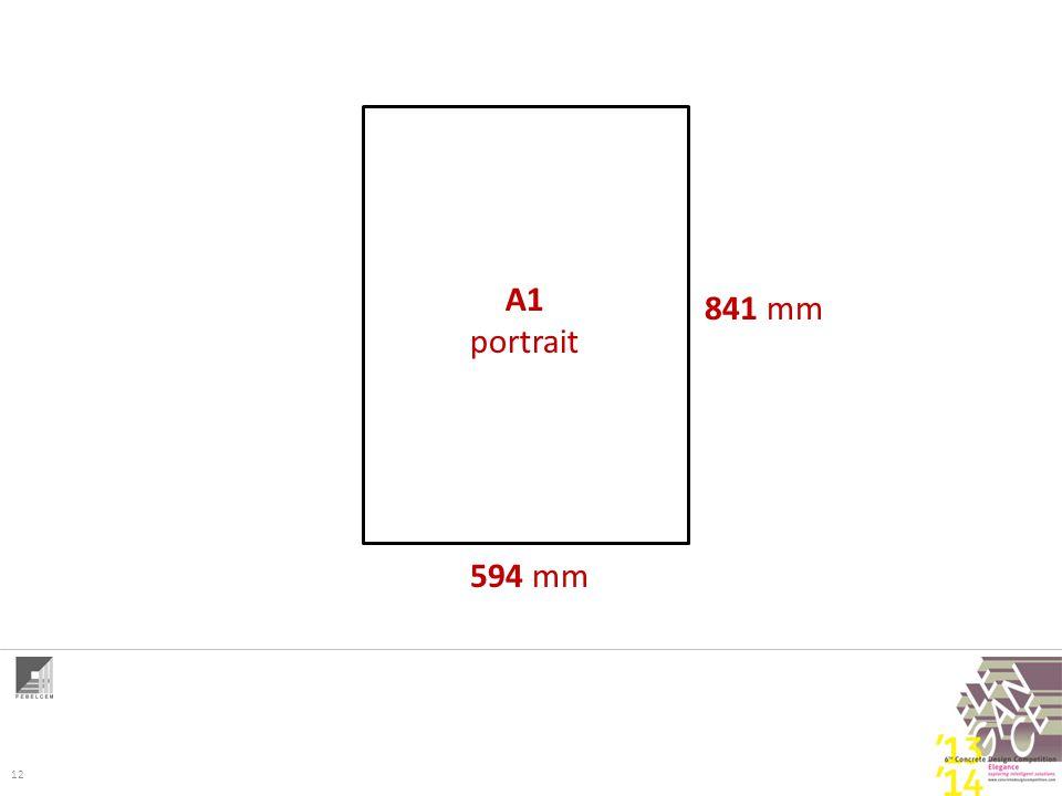 12 A1 portrait 841 mm 594 mm