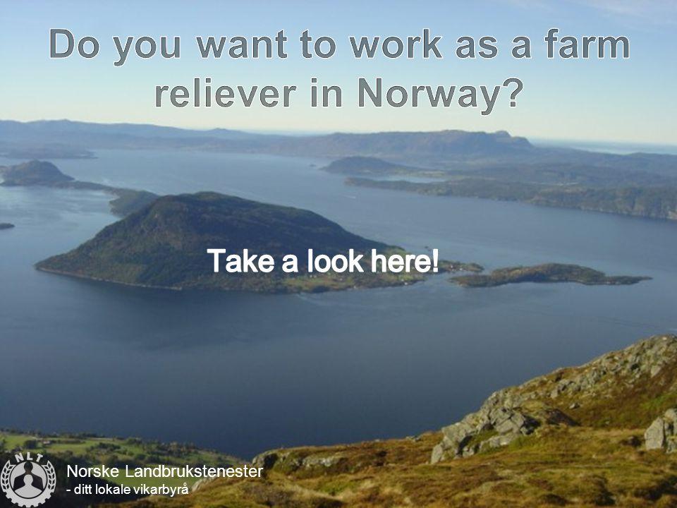 Norske Landbrukstenester - ditt lokale vikarbyrå