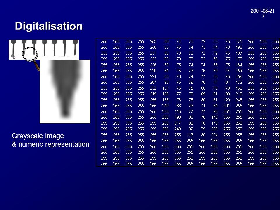 2001-08-21 7 Digitalisation Grayscale image & numeric representation