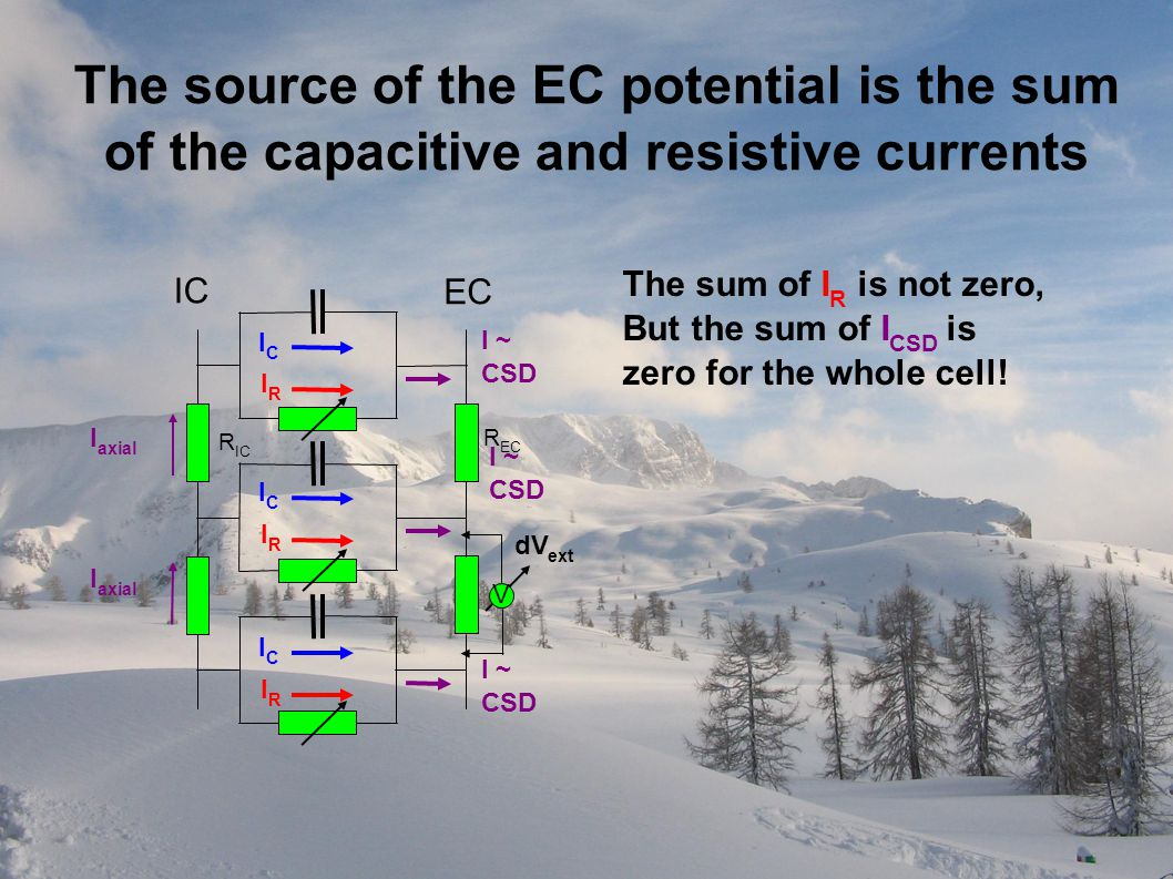 EC IC V dV ext ICIC IRIR R EC R IC I axial ICIC IRIR ICIC IRIR I ~ CSD I ~ CSD I ~ CSD The source of the EC potential is the sum of the capacitive and resistive currents The sum of I R is not zero, But the sum of I CSD is zero for the whole cell!