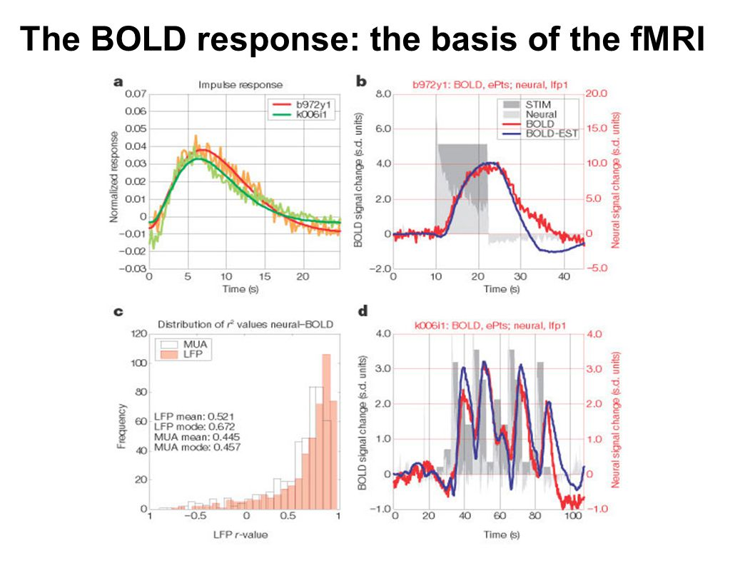 The BOLD response: the basis of the fMRI