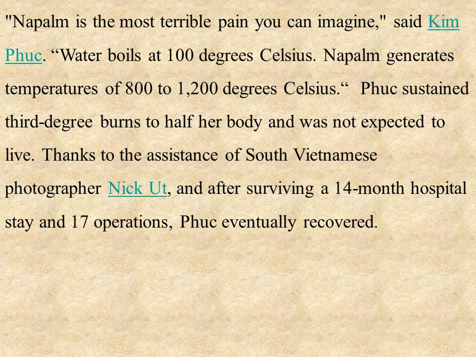 Napalm is the most terrible pain you can imagine, said Kim Phuc.