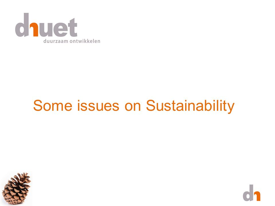 Some issues on Sustainability
