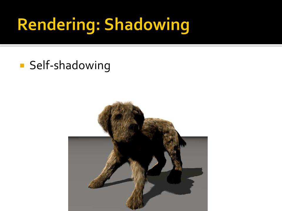 Self-shadowing