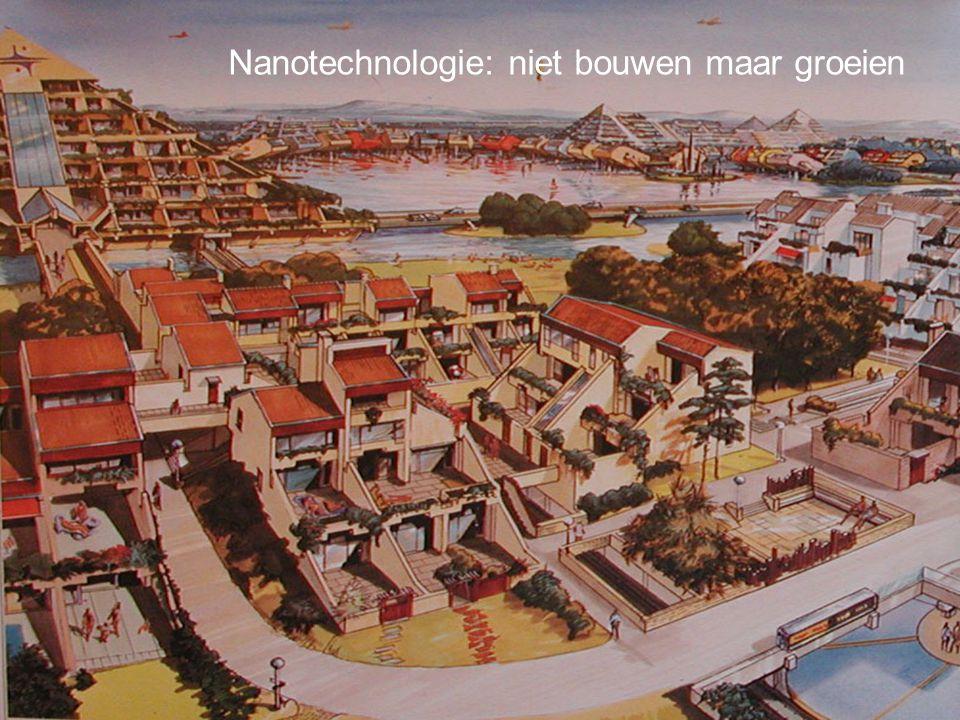 http://creativecommons.org/licenses/by-nc-sa/2.0/nl/ Nanotechnologie: niet bouwen maar groeien