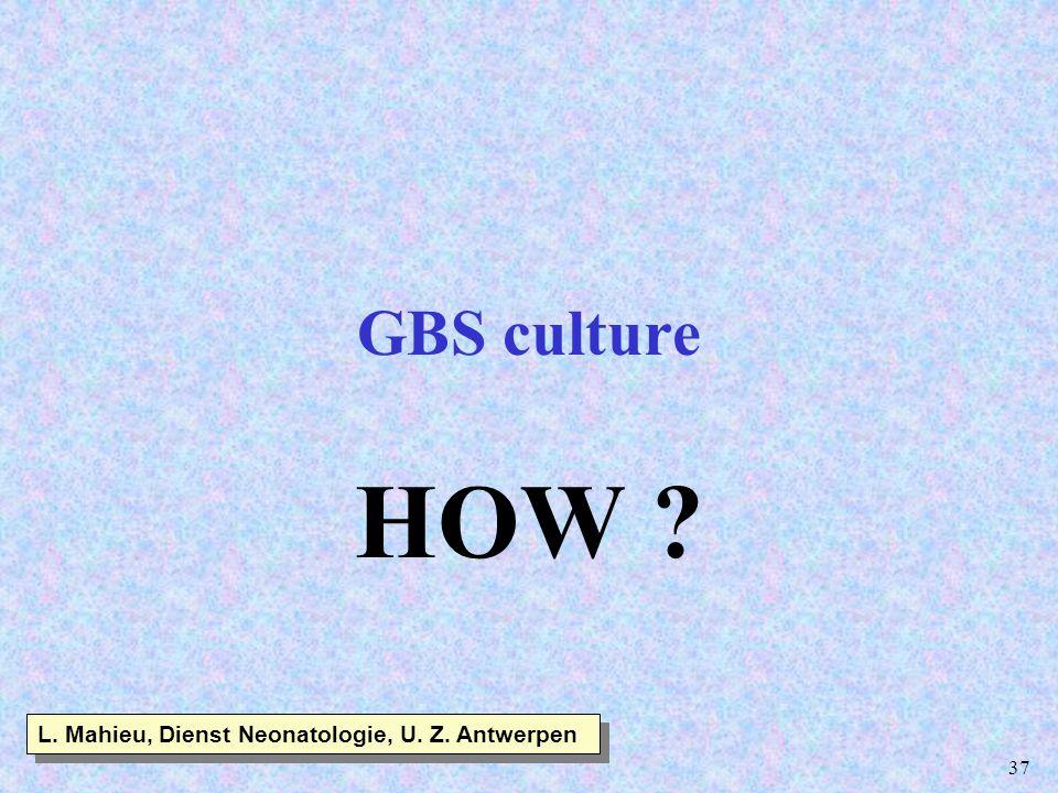 37 GBS culture HOW ? L. Mahieu, Dienst Neonatologie, U. Z. Antwerpen
