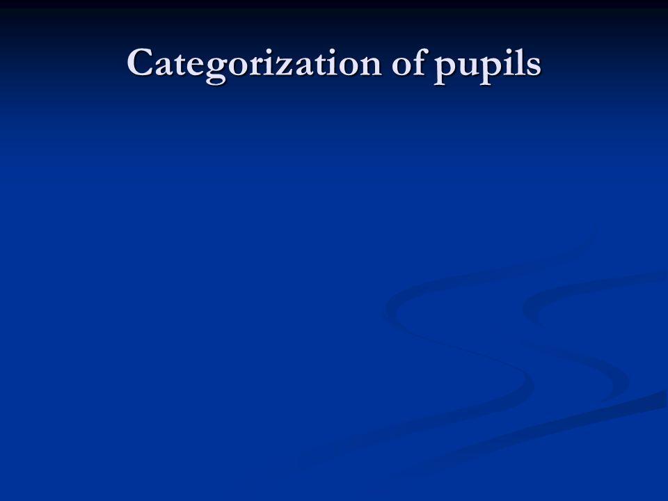 Categorization of pupils