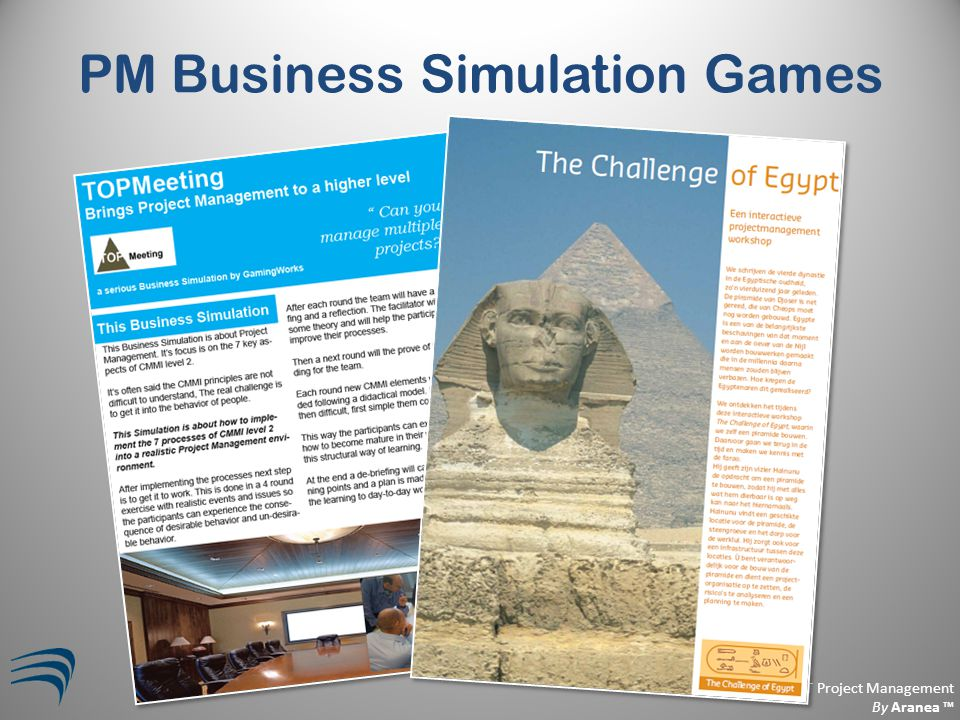Business Aligned IT Project Management By Aranea ™ PM Business Simulation Games