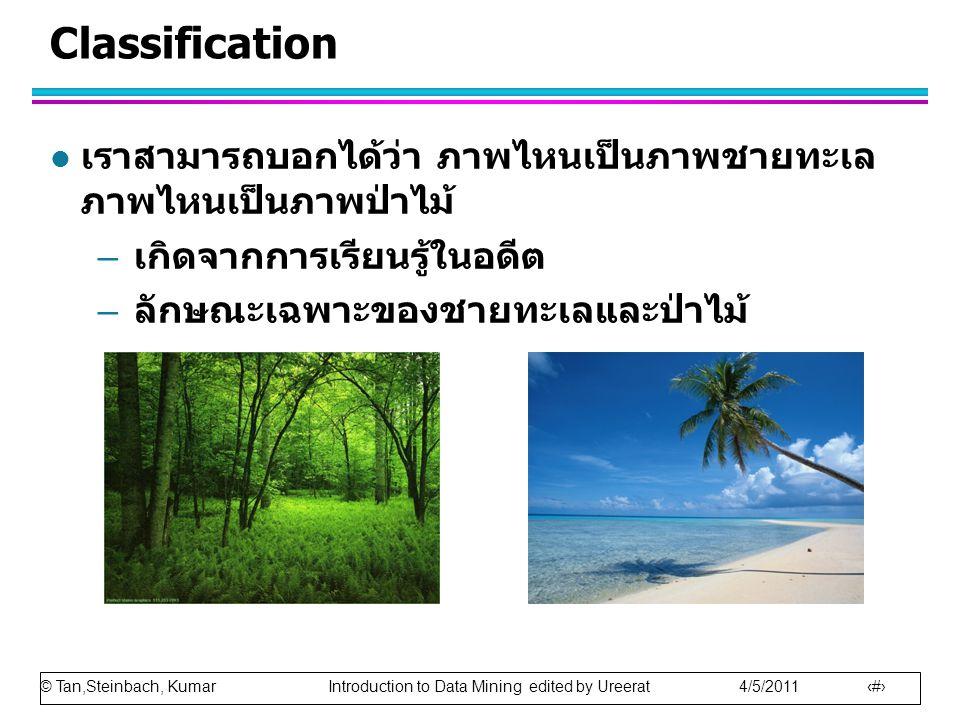 © Tan,Steinbach, Kumar Introduction to Data Mining edited by Ureerat 4/5/2011 18 Classification l เราสามารถบอกได้ว่า ภาพไหนเป็นภาพชายทะเล ภาพไหนเป็นภาพป่าไม้ – เกิดจากการเรียนรู้ในอดีต – ลักษณะเฉพาะของชายทะเลและป่าไม้