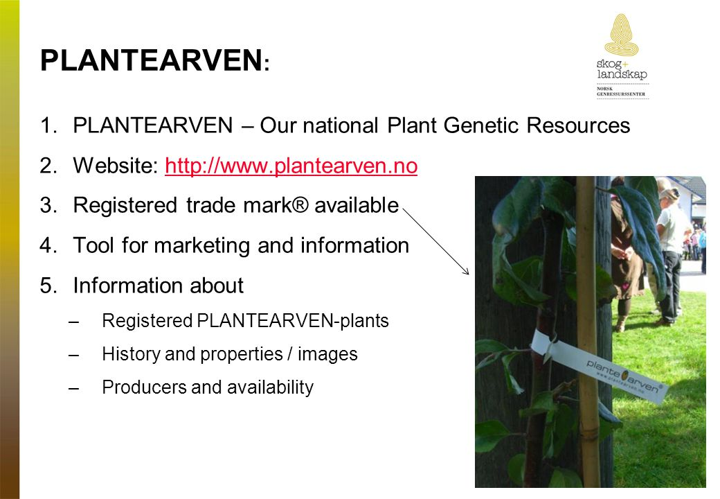 PLANTEARVEN : 1.PLANTEARVEN – Our national Plant Genetic Resources 2.Website:   3.Registered trade mark® available 4.Tool for marketing and information 5.Information about –Registered PLANTEARVEN-plants –History and properties / images –Producers and availability