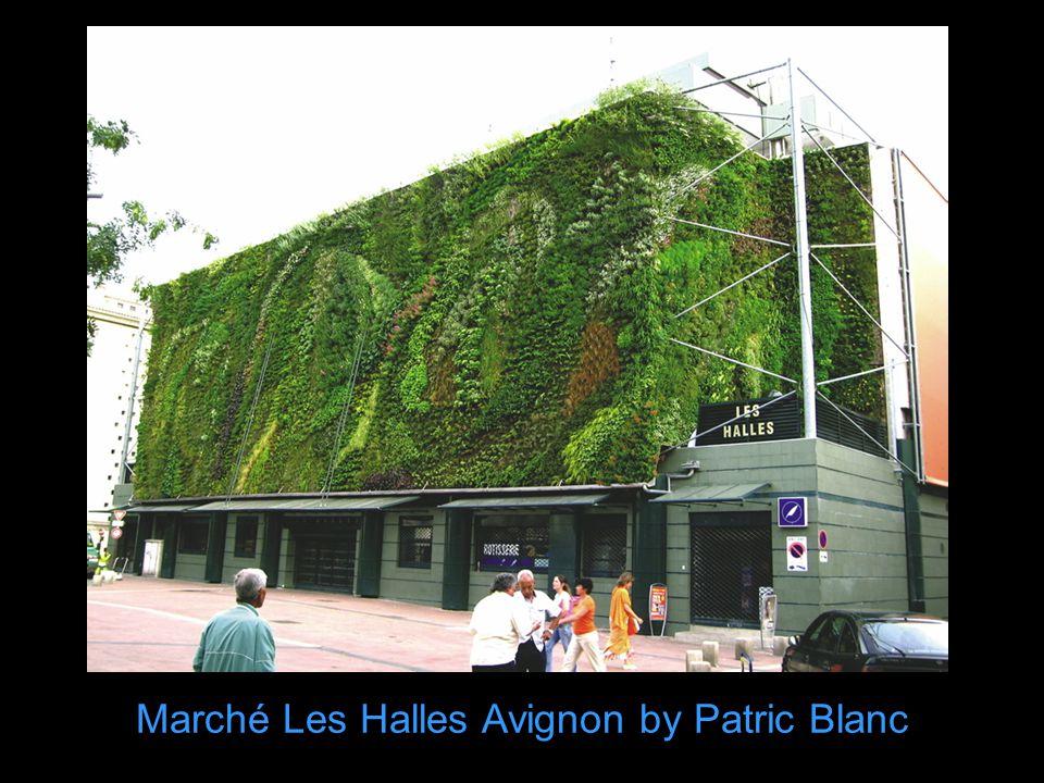 Marché Les Halles Avignon by Patric Blanc