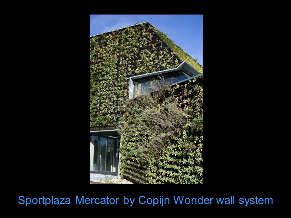 Sportplaza Mercator by Copijn Wonder wall system