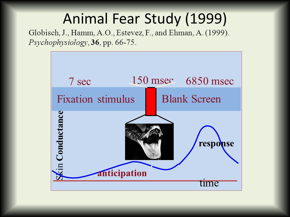 Animal Fear Study (1999) Skin Conductance time 6850 msec Blank Screen 150 msec Globisch, J., Hamm, A.O., Estevez, F., and Ehman, A. (1999). Psychophys