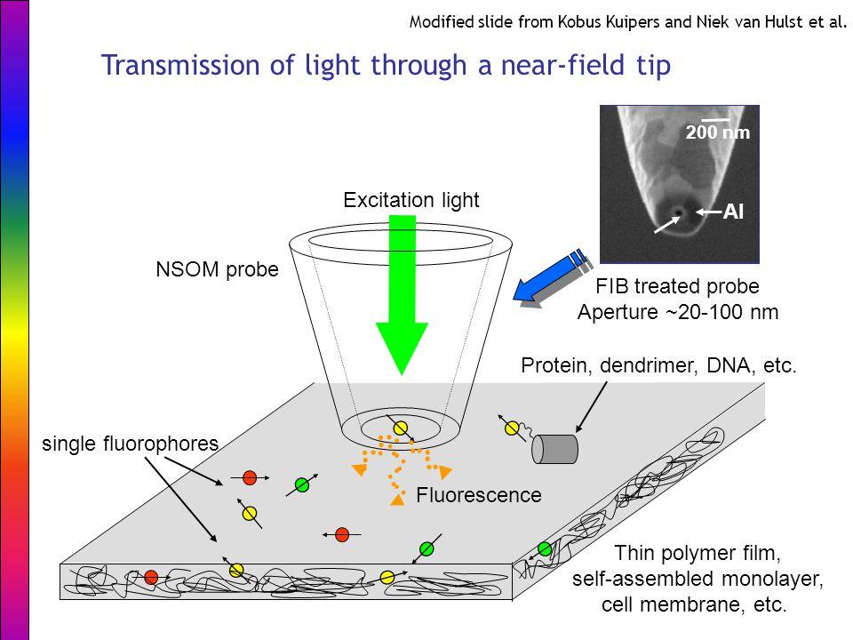 Thin polymer film, self-assembled monolayer, cell membrane, etc. single fluorophores NSOM probe Excitation light Fluorescence Protein, dendrimer, DNA,