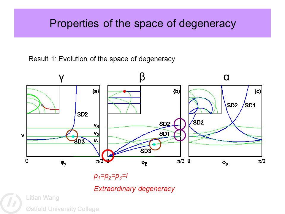 Litian Wang Østfold University College Properties of the space of degeneracy p 1 =p 2 =p 3 =i Extraordinary degeneracy Result 1: Evolution of the spac