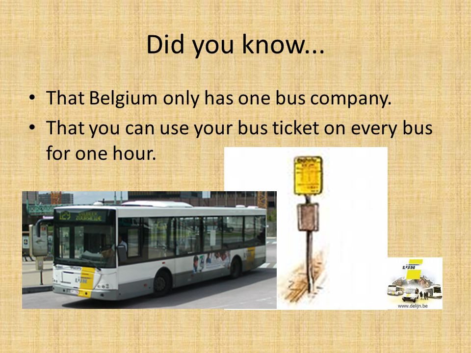 Did you know... That Belgium only has one bus company.