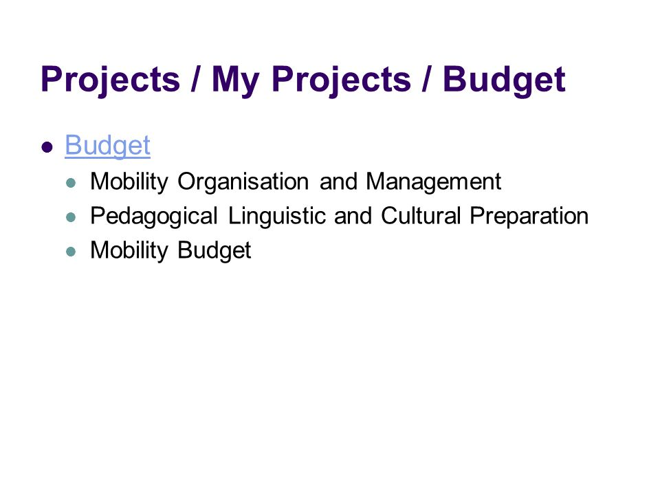 Projects / My Projects / Budget Budget Mobility Organisation and Management Pedagogical Linguistic and Cultural Preparation Mobility Budget