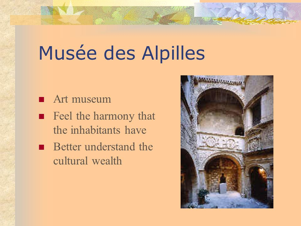 Musée des Alpilles Art museum Feel the harmony that the inhabitants have Better understand the cultural wealth