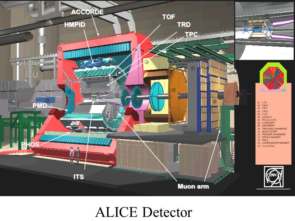 ALICE Detector TPC PHOS Muon arm TOF TRDHMPID PMD ITS ACCORDE