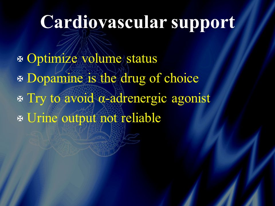 Cardiovascular support X Optimize volume status X Dopamine is the drug of choice X Try to avoid α-adrenergic agonist X Urine output not reliable