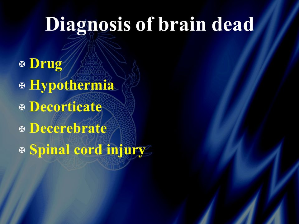 Diagnosis of brain dead X Drug X Hypothermia X Decorticate X Decerebrate X Spinal cord injury