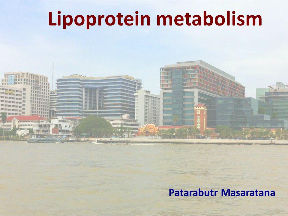 Lipoprotein metabolism Patarabutr Masaratana