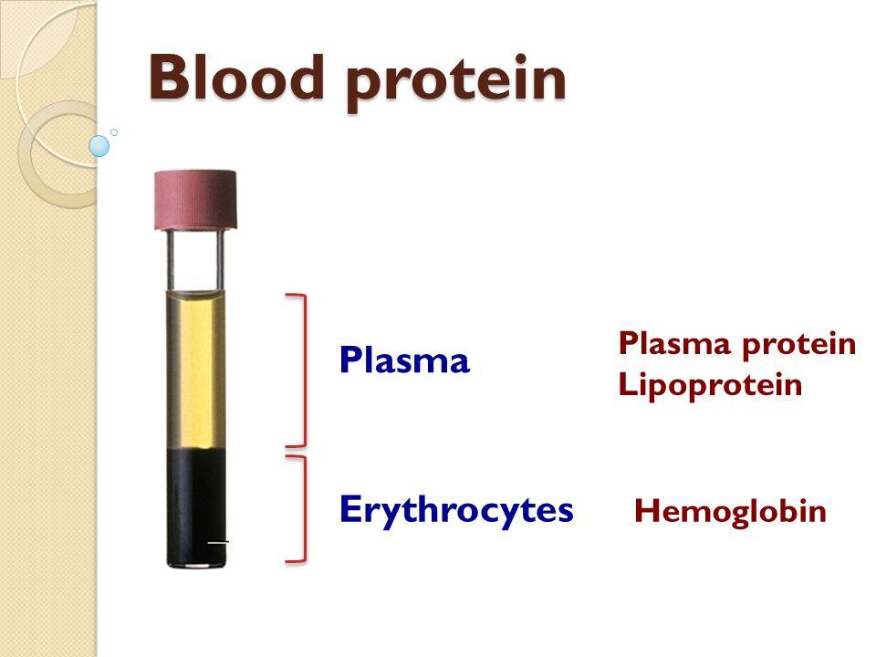 Blood protein Plasma Erythrocytes Plasma protein Lipoprotein Hemoglobin