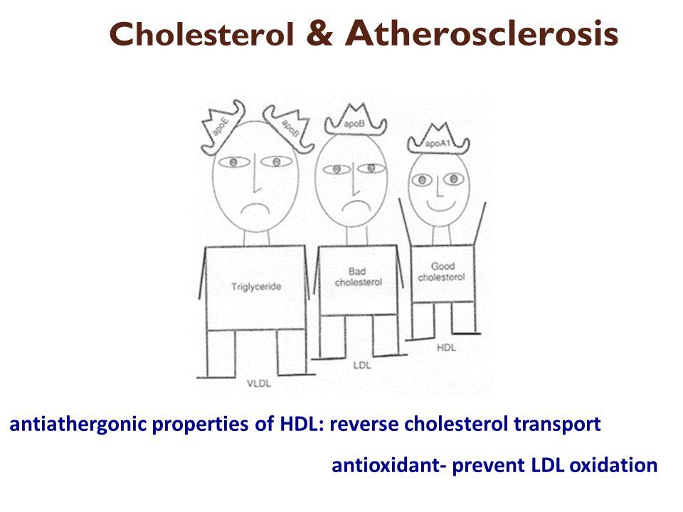 antiathergonic properties of HDL: reverse cholesterol transport antioxidant- prevent LDL oxidation