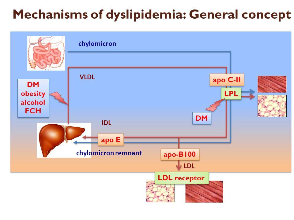 LDL receptor LPL apo-B100 apo E apo C-II DM obesity alcohol FCH DM obesity alcohol FCH DM Mechanisms of dyslipidemia: General concept chylomicron chyl