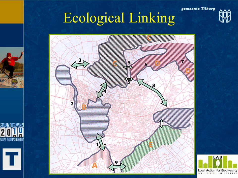 Ecological Linking