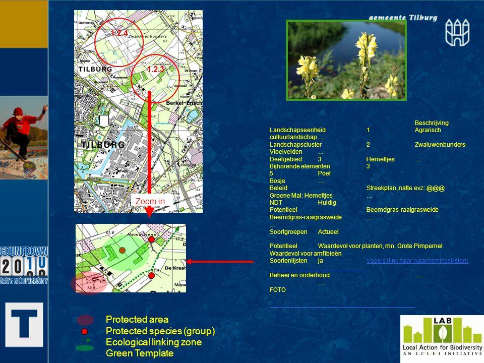 Protected area Protected species (group) Ecological linking zone Green Template Beschrijving Landschapseenheid1Agrarisch cultuurlandschap… Landschapsc