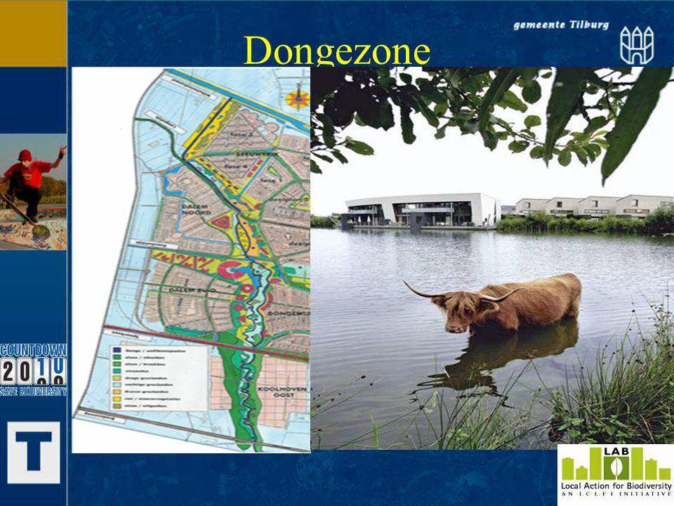 Dongezone