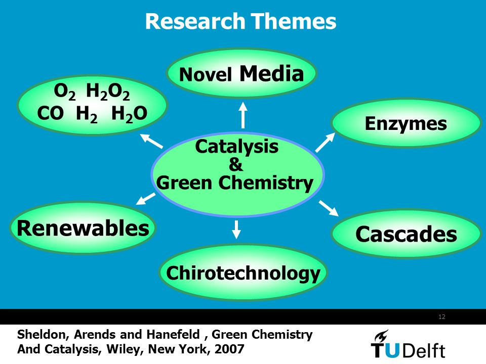12 Research Themes Catalysis & Green Chemistry Novel Media O 2 H 2 O 2 CO H 2 H 2 O Enzymes Cascades Chirotechnology Renewables Sheldon, Arends and Ha