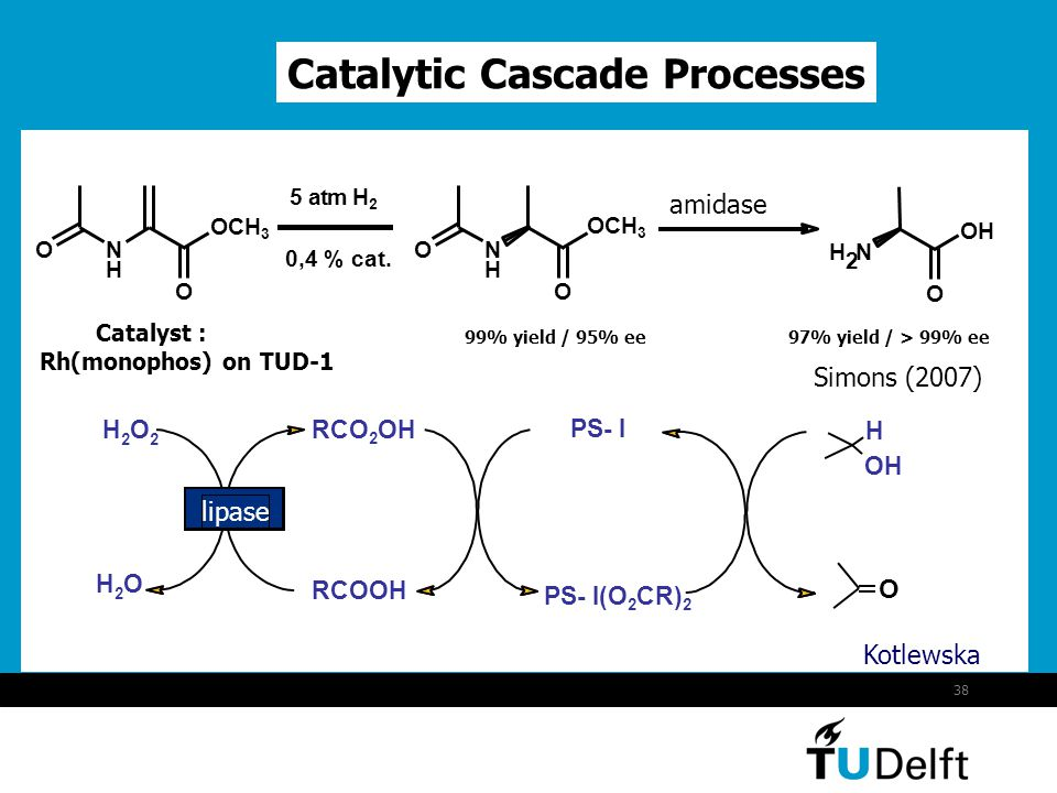 38 Catalytic Cascade Processes 97% yield / > 99% ee H 2 N O OH N H O OCH 3 ON H O O 0,4 % cat. 5 atm H2H2 99% yield / 95% ee amidase Catalyst : Rh(mon