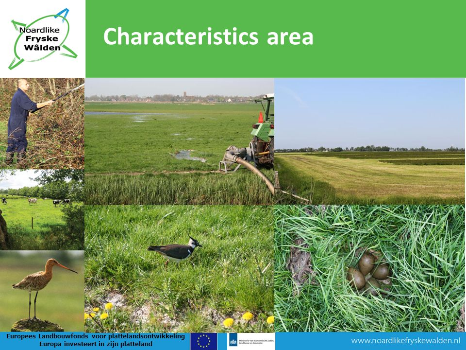 Position NFW in region Committee NFW Stakeholders Declaration of intent Work programme 30 points of agreement Meadowbirds and gooses Nature and landscape Agriculture, environment and water Regional economy Culture History and archeology Communi- cation Non-government Agricultural org.