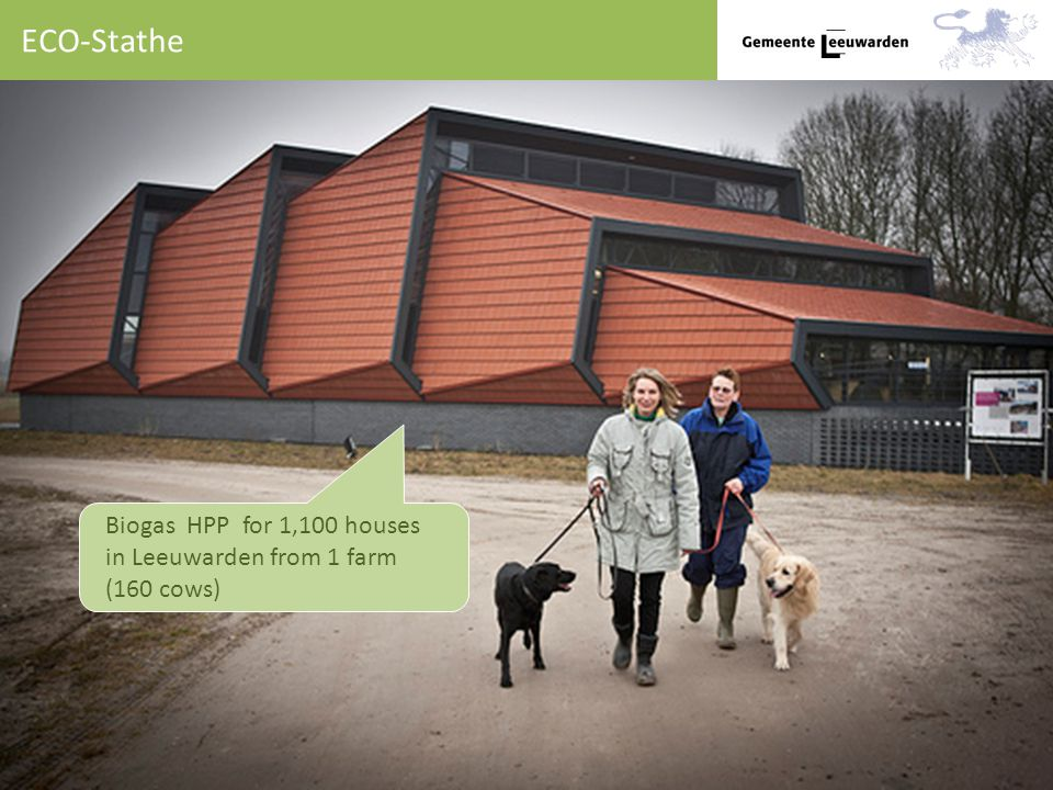 ECO-Stathe Biogas HPP for 1,100 houses in Leeuwarden from 1 farm (160 cows)