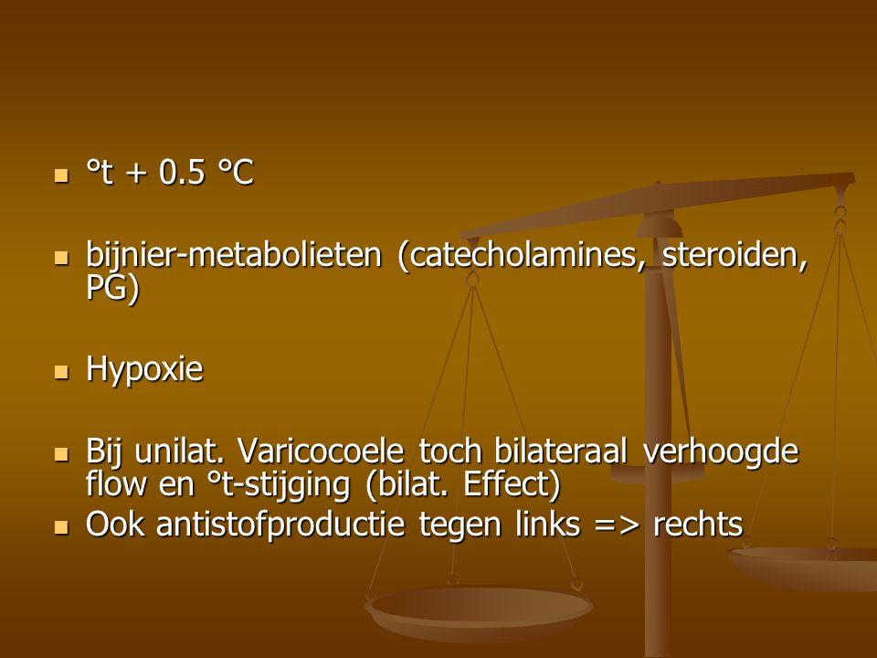 risicofactor = testiculaire hypotrofie...risicofactor = testiculaire hypotrofie...