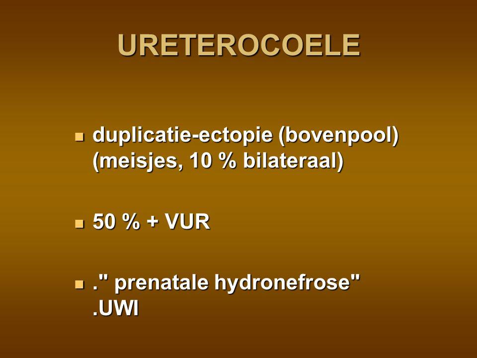 echo en cystogram echo en cystogram isotopen (MAG3) (HUW) isotopen (MAG3) (HUW) R/.