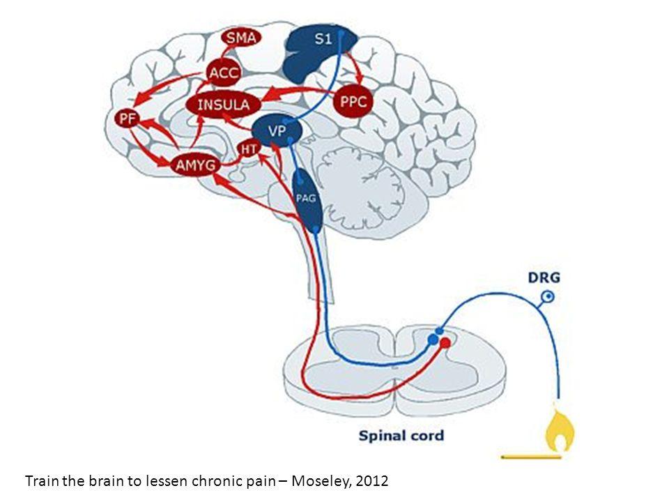 Train the brain to lessen chronic pain – Moseley, 2012