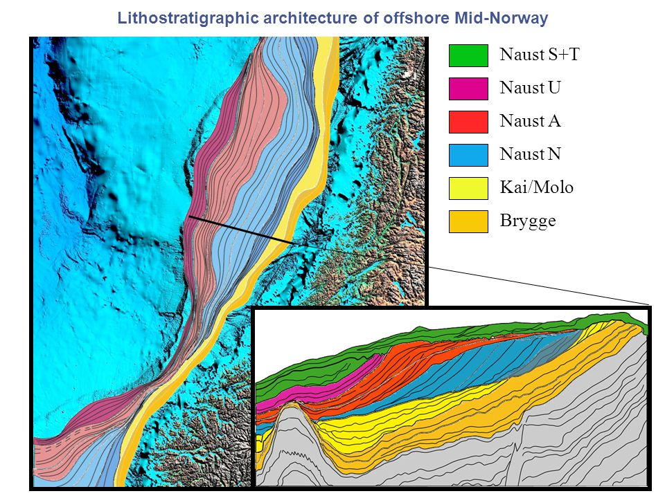 Naust S+T Naust U Naust A Naust N Kai/Molo Brygge Lithostratigraphic architecture of offshore Mid-Norway