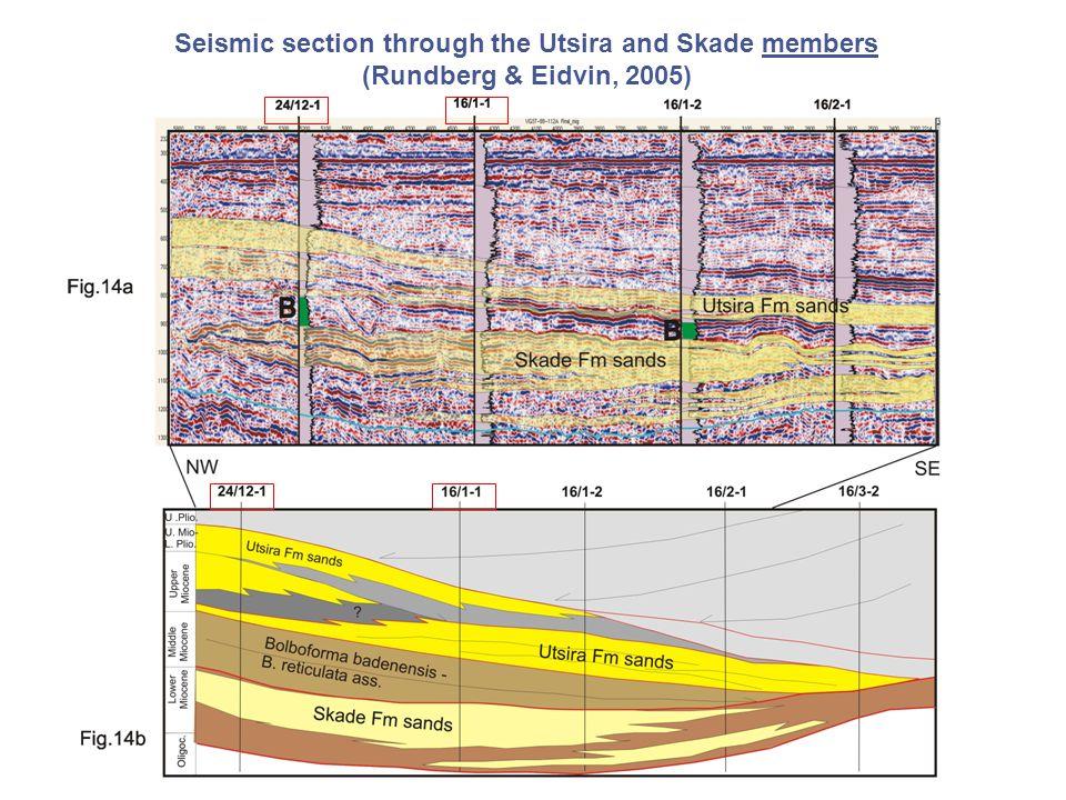 Seismic section through the Utsira and Skade members (Rundberg & Eidvin, 2005)
