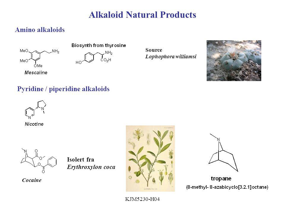 KJM5230-H04 Alkaloid Natural Products Amino alkaloids Source Lophophora williamsi Pyridine / piperidine alkaloids Cocaine Isolert fra Erythroxylon coca