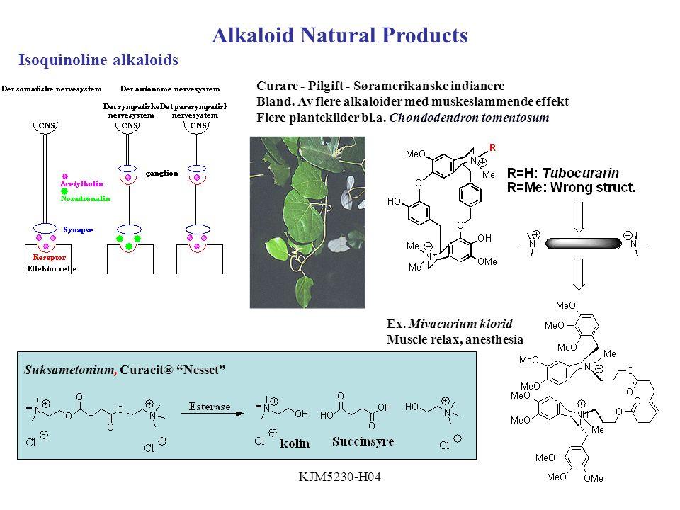 KJM5230-H04 Alkaloid Natural Products Curare - Pilgift - Søramerikanske indianere Bland.