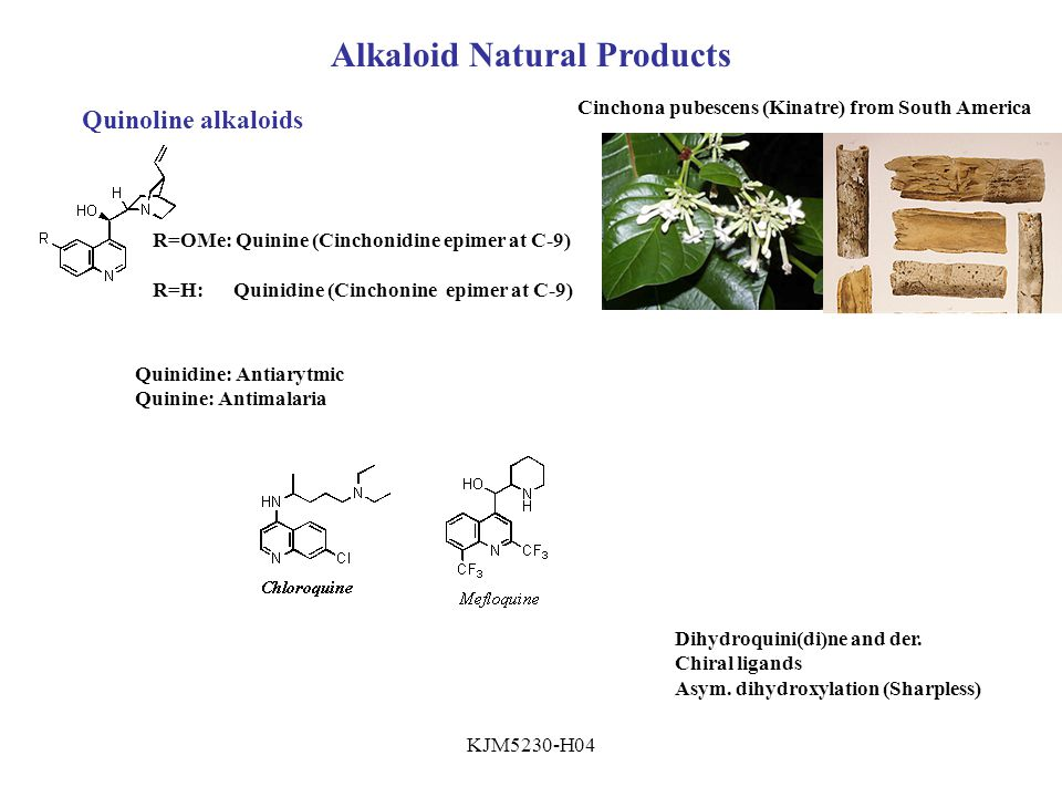 KJM5230-H04 Alkaloid Natural Products Quinoline alkaloids Cinchona pubescens (Kinatre) from South America R=OMe: Quinine (Cinchonidine epimer at C-9) R=H: Quinidine (Cinchonine epimer at C-9) Quinidine: Antiarytmic Quinine: Antimalaria Dihydroquini(di)ne and der.
