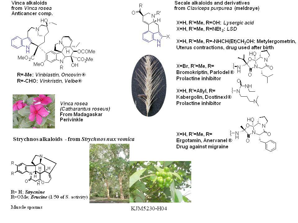 KJM5230-H04 Strychnos alkaloids - from Strychnos nux vomica