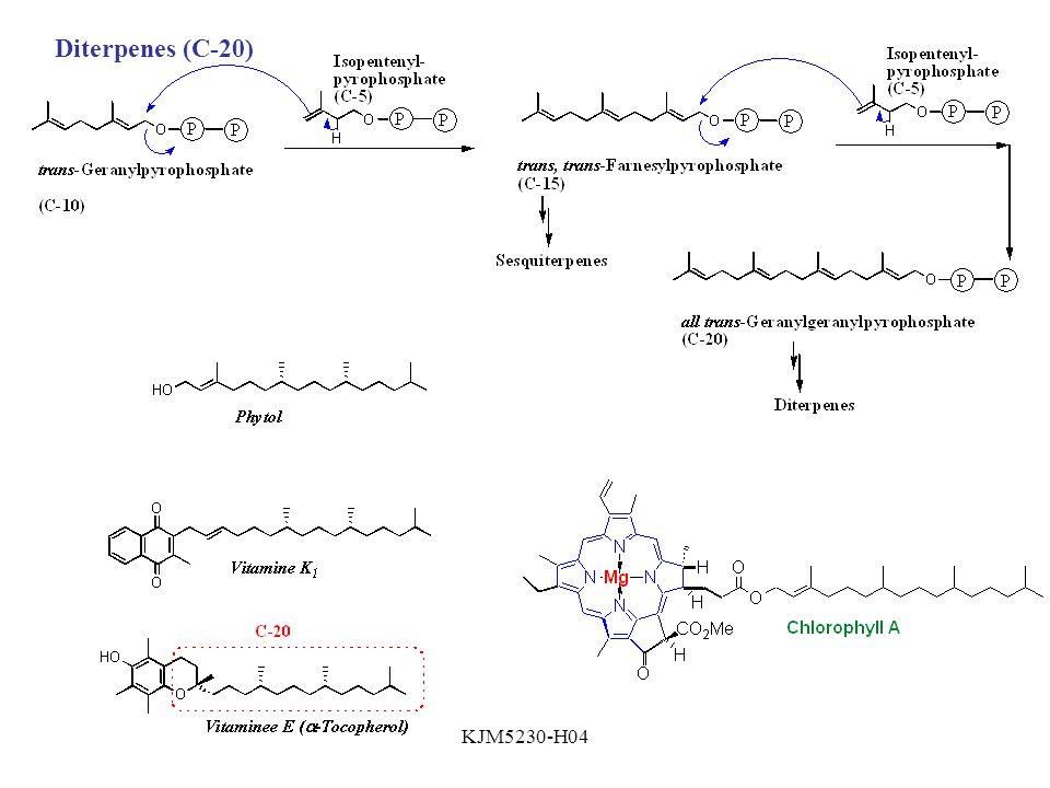 KJM5230-H04 Diterpenes (C-20)
