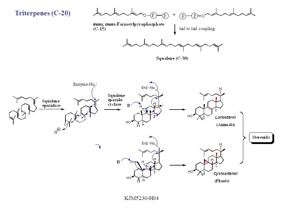 KJM5230-H04 Triterpenes (C-20)