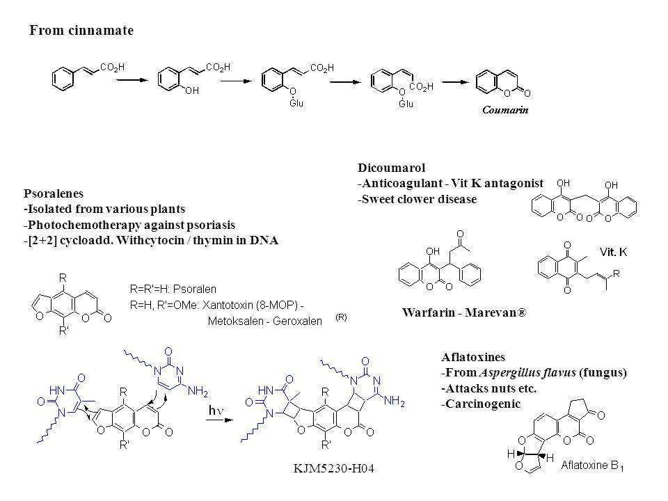 KJM5230-H04 From cinnamate Dicoumarol -Anticoagulant - Vit K antagonist -Sweet clower disease Warfarin - Marevan® Aflatoxines -From Aspergillus flavus (fungus) -Attacks nuts etc.